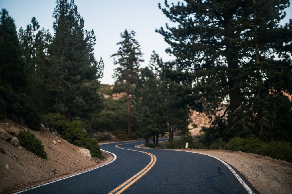 road, bend, curve